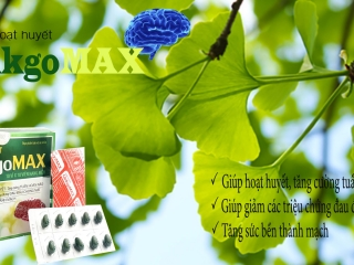 Hoạt huyết Ginkgo Max